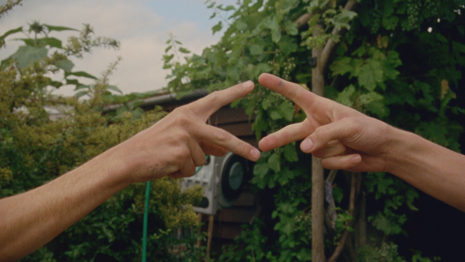 How to Deaf   If You Knew (dir Stroma Cairns) 1